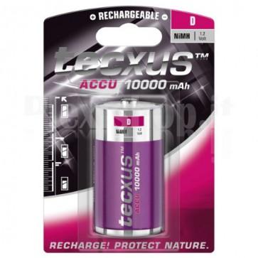 Batteria Ricaricabile Torcia D 10.000 mAh