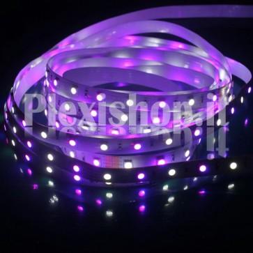 RGB+W - Striscia LED ad Alta Luminosità 12V