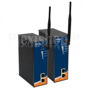 Punto accesso Industriale wireless IEEE802.11b/g