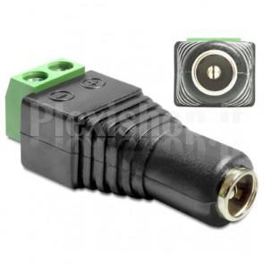 Adattatore Alimentazione DC 2.5 x 5.5 mm Femmina Terminal Block 2 pin