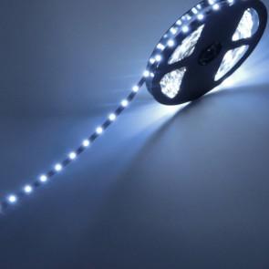 BIANCO FREDDO - Striscia LED SMD 3528 60 Led/Metro