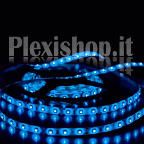 BLU - Bobina Striscia LED SMD 5050 60 Led/Metro IP65
