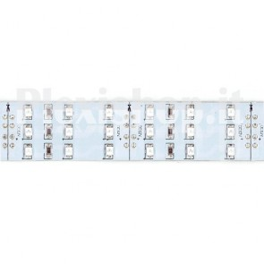 VERDE - Bobina Striscia LED SMD 3528 180 Led/Metro IP20