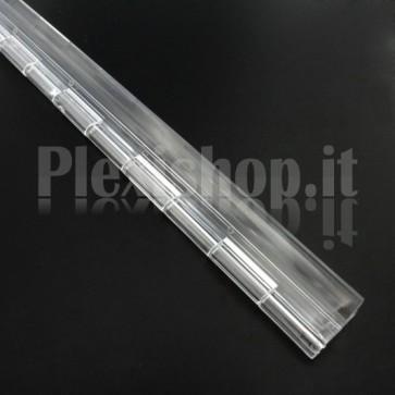 Clear Acrylic hinge 300x45mm