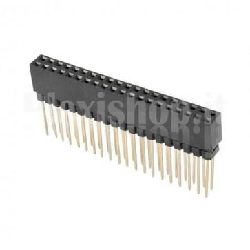 Strip di contatti quadrati 2x20 femmina tipo lungo, passo 2.54 mm