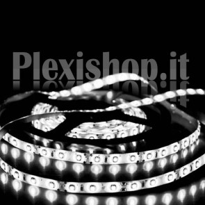 BIANCO FREDDO - Bobina striscia LED SMD 3528 60 LedMetro