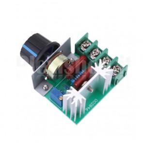 Regolatore di velocità per motori 220VAC e Dimmer, potenza 2000W
